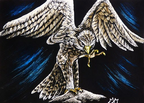 """Kestrel  (ACEO)"" original fine art by Monique Morin Matson"