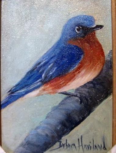 """Blue Bird on Fence"" original fine art by Barbara Haviland"