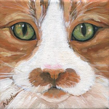 """Cat Eyes 5"" original fine art by Nadi Spencer"