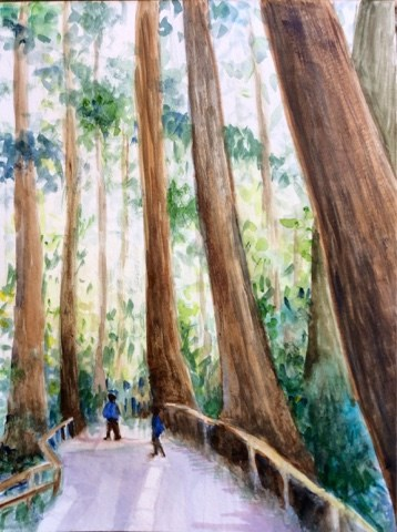 """Redwoods and admirers"" original fine art by Hilary J. England"