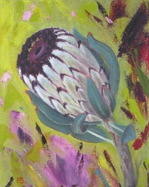 """Wild Protea"" original fine art by Pera Schillings"