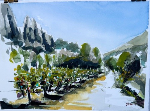"""1500 Dentelles de Montmirail"" original fine art by Dietmar Stiller"