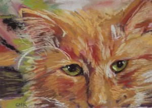 """Jack the Cat"" original fine art by Catherine Kauffman"