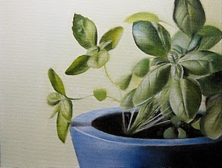 """Basil Plant"" original fine art by Jonathan Aller"