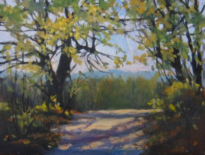 """On the Road, Saluta, NC"" original fine art by Connie Snipes"