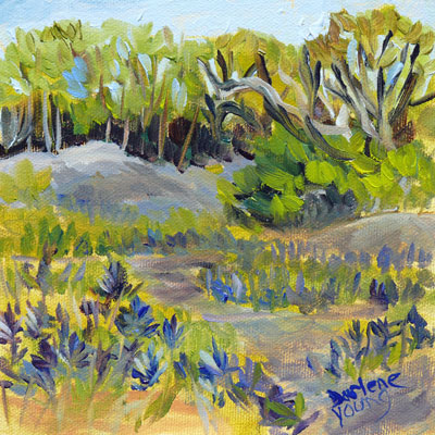 """Camus Meadow"" original fine art by Darlene Young"