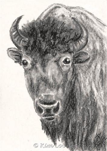 """Charcoal Buffalo"" original fine art by Kim Loberg"