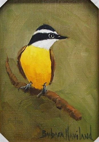 """""""Kiskadee bird framed oil painting by Barbara Haviland"""" original fine art by Barbara Haviland"""