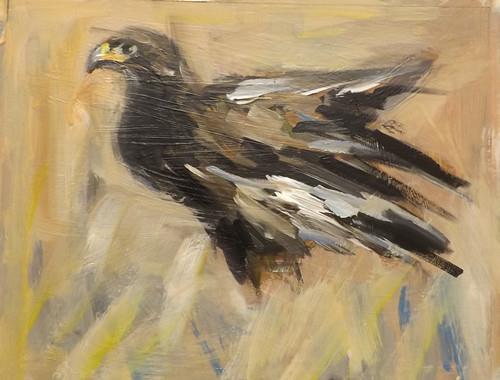 """""""Eagle,U31"""" original fine art by Run-      Zhang Zane"""