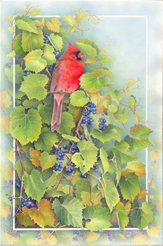 """Cardinal in the Grape Vine"" original fine art by Cheryl Plautz"