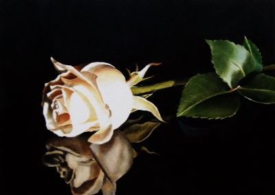 """Champagne Rose"" original fine art by Jacqueline Gnott, TWSA, WHS"