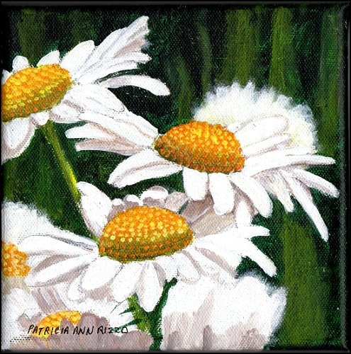 """Wild Daisies"" original fine art by Patricia Ann Rizzo"