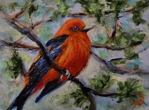 """3236 - RED TANAGER - ACEO Series"" original fine art by Sea Dean"