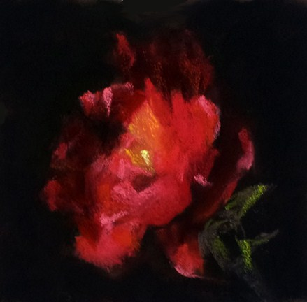 """Impression of a Tea Rose"" original fine art by Cindy Haase"