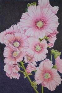 """Pink Hollyhocks"" original fine art by Robert Frankis"