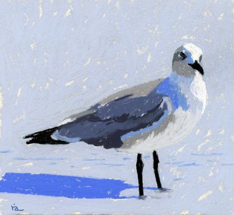 """Pastel Seagull challenge"" original fine art by Ria Hills"