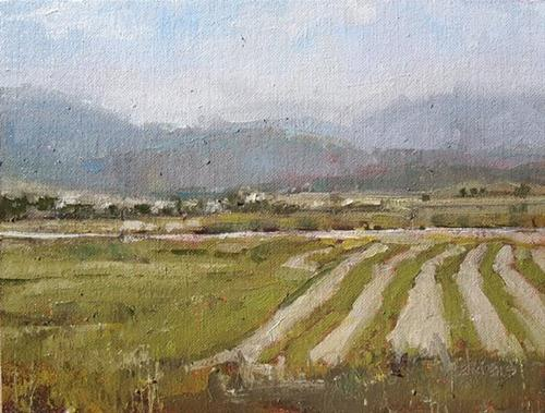 """Summer Fields"" original fine art by Julie Davis"