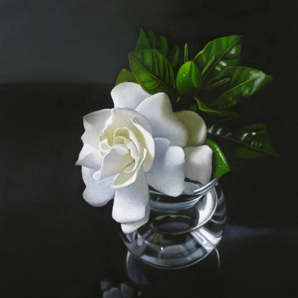 """Gardenia 6x6"" original fine art by M Collier"