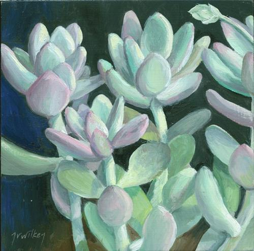 """Graptopetalum"" original fine art by Jean Wilkey"