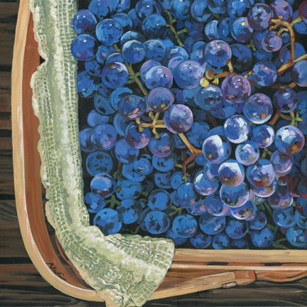"""Red Grapes"" original fine art by Nadi Spencer"