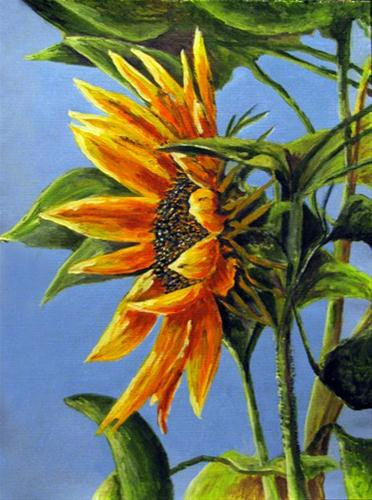 """Sunflower Profile"" original fine art by Nan Johnson"