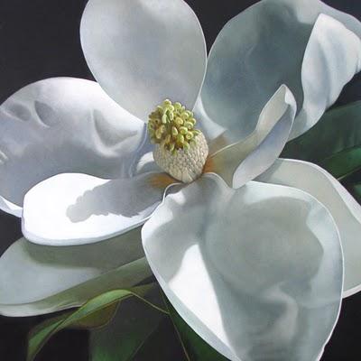 """Magnolia     24x24"" original fine art by M Collier"