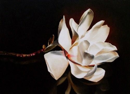 """Magnolia in Repose"" original fine art by Jacqueline Gnott, TWSA, WHS"