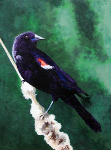 """Red-winged Blackbird"" original fine art by Nan Johnson"