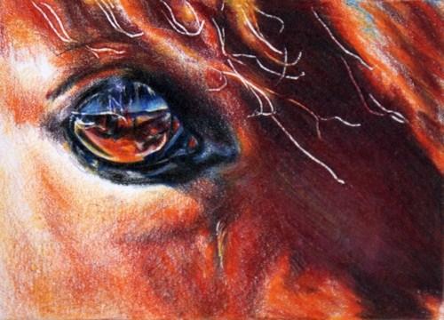 """Skylight"" original fine art by Crystal Cook"