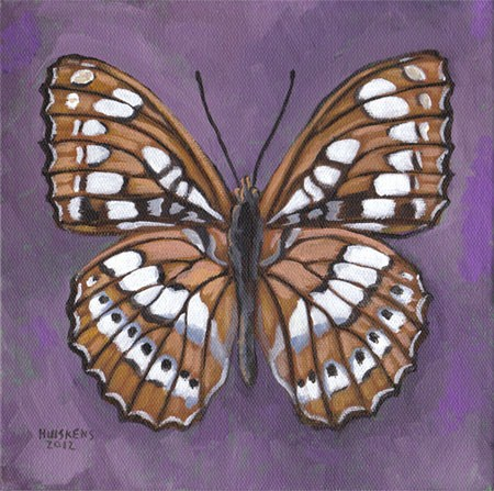 """Butterfly No. 12"" original fine art by Randal Huiskens"