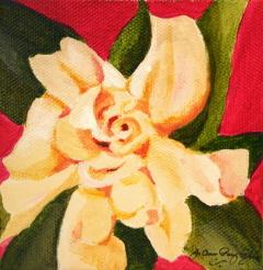 Colors of White #2 original fine art by Joanne Perez Robinson