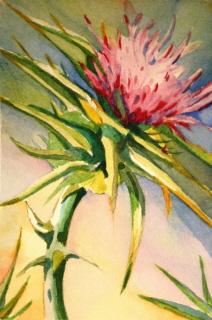 """""""Wild and Purple"""" original fine art by JoAnne Perez Robinson"""