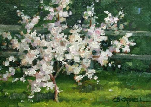 """DWARF APPLE TREE An Original Plein Air Oil Painting by Claire Beadon Carnell"" original fine art by Claire Beadon Carnell"