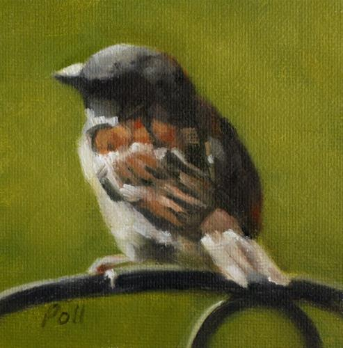 """Sunlit Sparrow"" original fine art by Pamela Poll"