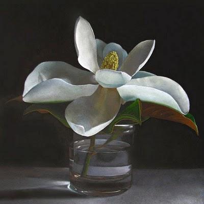 """Magnolia  8x8"" original fine art by M Collier"