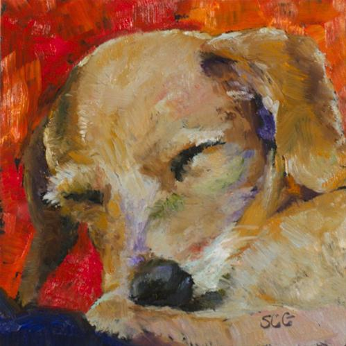 """Let Sleeping Dogs Lie"" original fine art by Sue Churchgrant"