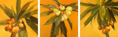 """Loquat Clusters Trio"" original fine art by Laurel Daniel"
