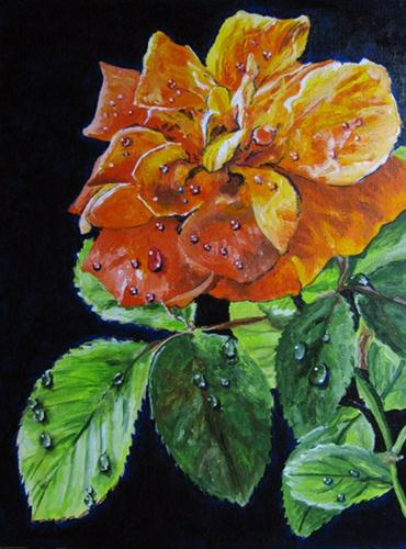"""Rose Water Droplets"" original fine art by Nan Johnson"