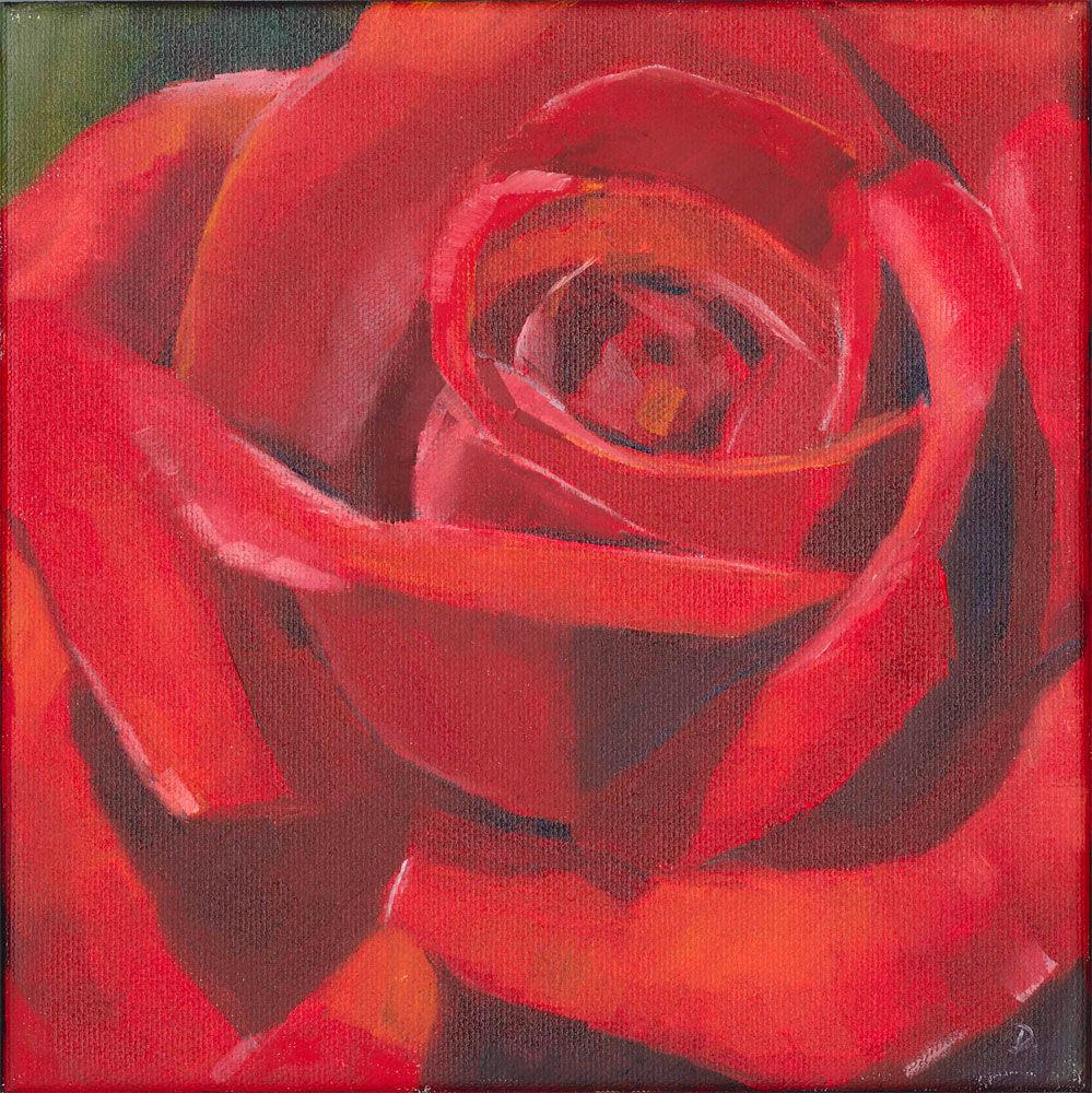 """Red Rose Study"" original fine art by Elizabeth Dawn Johnston"