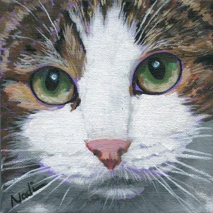 """Cat Eyes 2"" original fine art by Nadi Spencer"