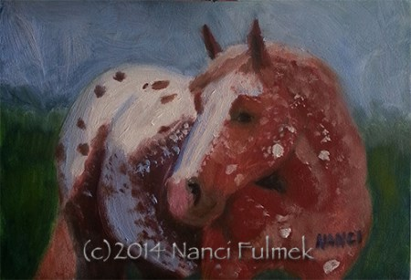 """Newman Mini Portrait Appaloosa"" original fine art by Nanci Fulmek"