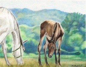 """White Mare and Foal"" original fine art by Charlotte Yealey"