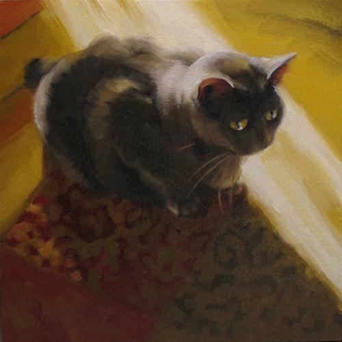 """Cat and Sunbeam original oil painting"" original fine art by Diane Hoeptner"