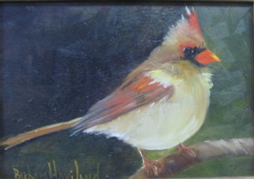 """Female Cardinal"" original fine art by Barbara Haviland"