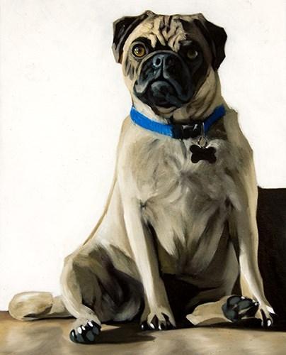 """""""Sun Pug"""" original fine art by Lauren Pretorius"""