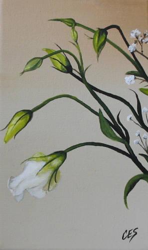 """Lisianthus"" original fine art by ~ces~ Christine E. S. Code"