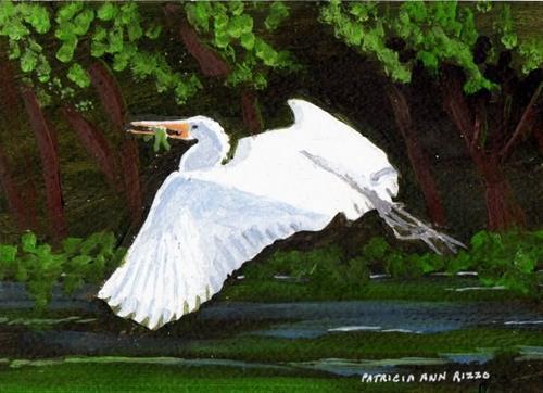 """""""Gliding Egret"""" original fine art by Patricia Ann Rizzo"""