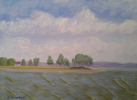 """View from Wade's Point #1"" original fine art by Elaine Shortall"