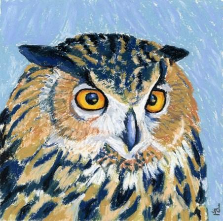 Tawny owl pastel original fine art by Ria Hills