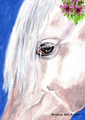 """White Horse Head Study"" original fine art by Patricia Ann Rizzo"